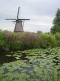 Windmills at Kinderdijk, The Netherlands. Canals and Windmills at Historic Kinderdijk, world heritage site in South Holland, The Netherlands Stock Photography