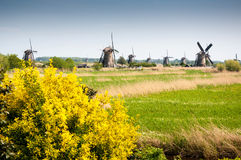 Windmills in Kinderdijk, The Netherlands Stock Image