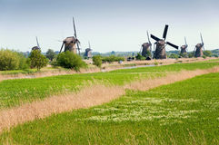 Windmills in Kinderdijk, The Netherlands Royalty Free Stock Photos