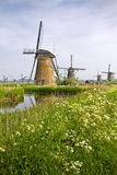 Windmills at Kinderdijk, the Netherlands in spring Stock Photo