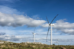 Windmills in the Maldonado Department, Uruguay Royalty Free Stock Image