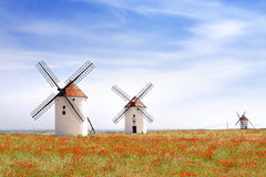 Windmills in Mota del Cuervo. Stock Photos