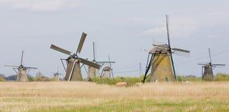 Windmills, Netherlands Royalty Free Stock Photo