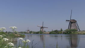 Windmills in The Netherlands stock video footage