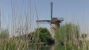 Windmills in The Netherlands stock footage