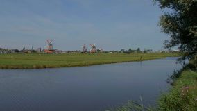 Windmills in the Netherlands - typical view in Holland stock video footage