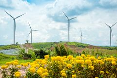 Windmills New Energy With Spring Flower On The Moutain At Khao K Royalty Free Stock Image