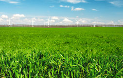Windmills over the green field Stock Images
