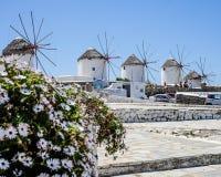 Windmills på Mykonos Arkivfoton
