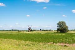 Windmills in polder, Netherlands. Polderlandscape with two hollow post windmills near Almkerk in Brabant, Netherlands stock image