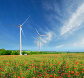 Windmills and poppies Stock Photo