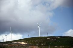Windmills producing clean electricity Royalty Free Stock Photo