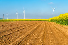 Windmills on the field Royalty Free Stock Images