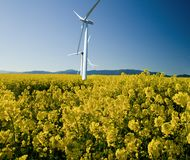 Windmills in a rape-seed field against a bright blue sky Royalty Free Stock Photography