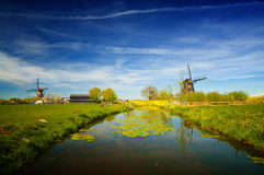 Windmills at riverside on a sunny day, Netherlands Stock Images