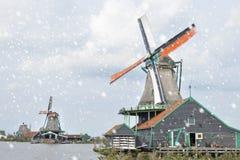 Windmills in snowy villlage Zaanse Schans, Holland Royalty Free Stock Image