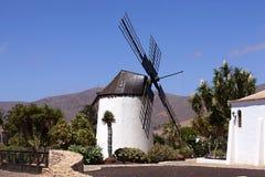 Windmills in Spain. Island fuertawentura royalty free stock photo