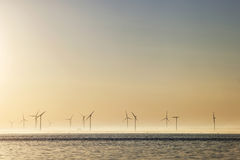 Windmills at sunrise in Holland Stock Photos