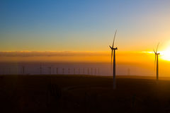 Windmills in sunset Royalty Free Stock Photo