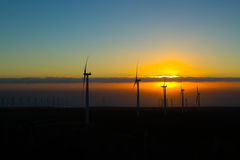 Windmills in sunset Royalty Free Stock Photos