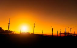 Windmills in sunset time sky. Royalty Free Stock Images