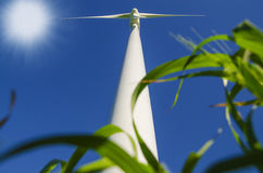 Windmills to generate wind power Royalty Free Stock Images