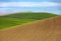 Windmills and wheat fields Royalty Free Stock Photography