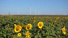 Windmills, Wind Turbines, Agriculture Wheat Field Generator Power, Electricity stock photography