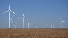 Windmills, wind turbines, agriculture wheat field generator power, electricity.  stock video footage