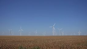 Windmills, Wind Turbines, Agriculture Wheat Field Generator Power, Electricity.  stock footage