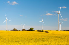 Windmills between yellow rape fields Royalty Free Stock Images