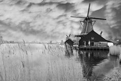 Windmills in Zaanse Schans, Holland Royalty Free Stock Photography