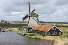 Windmills at Zaanse Schans Royalty Free Stock Image