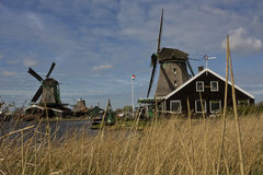 Windmills of Zaanse Schans, Netherlands Royalty Free Stock Images