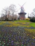 Windmolen in Bremen met pansies royalty-vrije stock afbeeldingen