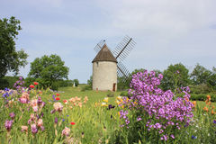 Windmolen en Iristuin in het Lot-et-Garonne Stock Afbeelding