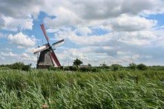 Windmolen in Kinderdijk stock foto's