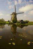 Windmolen Kinderdijk Stock Photos