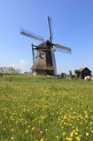 Windmolen in Nederland Royalty-vrije Stock Fotografie