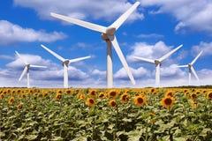 Windmolen op een gebied van zonnebloemen Stock Foto's