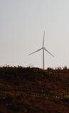 Windmolen op gebied Stock Foto's