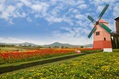 Windmolen in tuin Stock Foto's