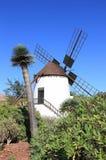 Windmolen van Antigua (Molino DE Antigua). Fuerteventura, Canarische Eilanden, Spanje. Stock Fotografie