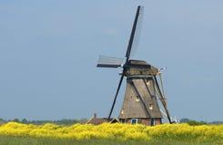 Windmolen van Holland 2 Stock Foto