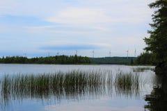 Windmolens aan de andere kant van een reservoir in het bos Stock Afbeelding