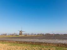 Windmolens in Holland Stock Afbeelding