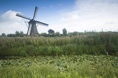 Windmolens in Holland Royalty-vrije Stock Afbeeldingen