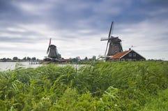Windmolens in Holland Stock Afbeeldingen