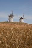 Windmolens in Spanje Royalty-vrije Stock Foto