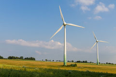 2 Windmotoren mit wilder Wiese Stockfotografie